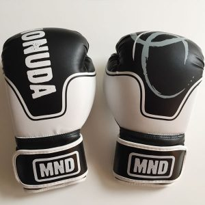Boxing Gloves Mex Front